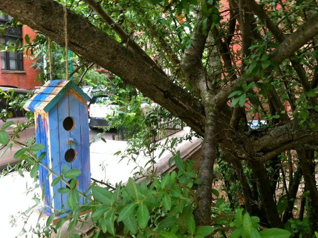 birdhouseblue
