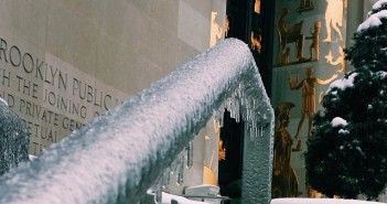 Ice by Brooklyn Public Library on FB