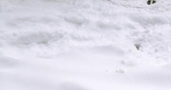 Snow Boots, Snowy Sidewalk