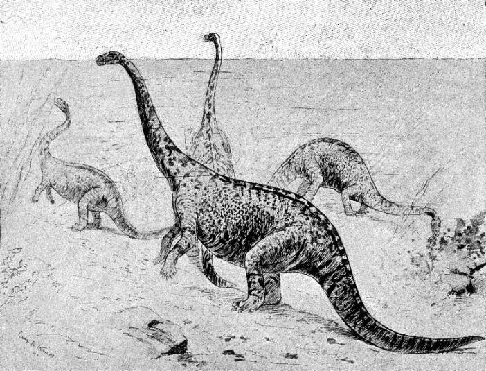 Dinosaurs via wikimedia