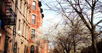 Park Slope Streets: Union Street near 5th Avenue in Spring